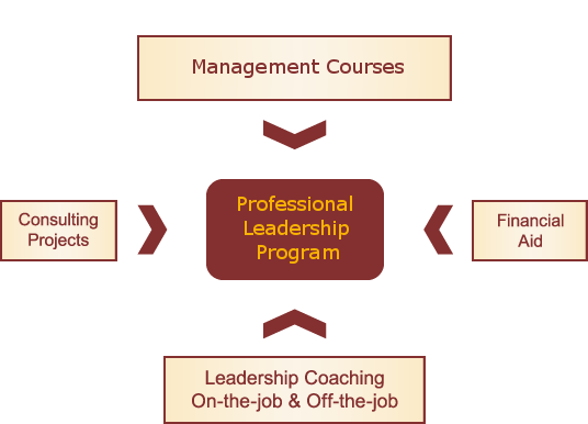 Professional Leadership Program